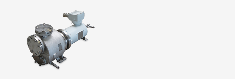 04 - bf243 - 1137 - optimex Насосы с герметизированным двигателем - api685